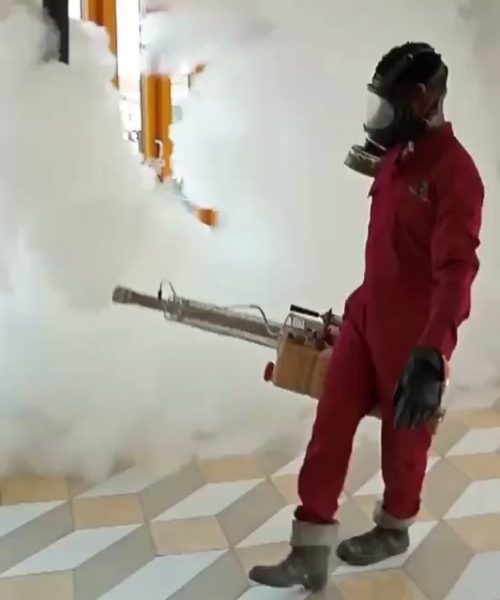 fumigation and pest control services in Nigeria